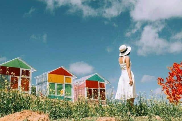 Nông trại Sunny Farm Đà Lạt