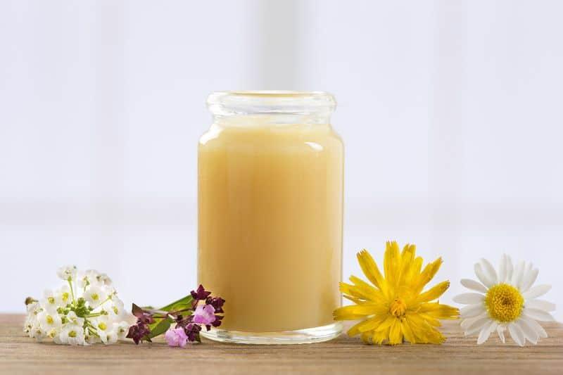 sữa ong chúa là gì