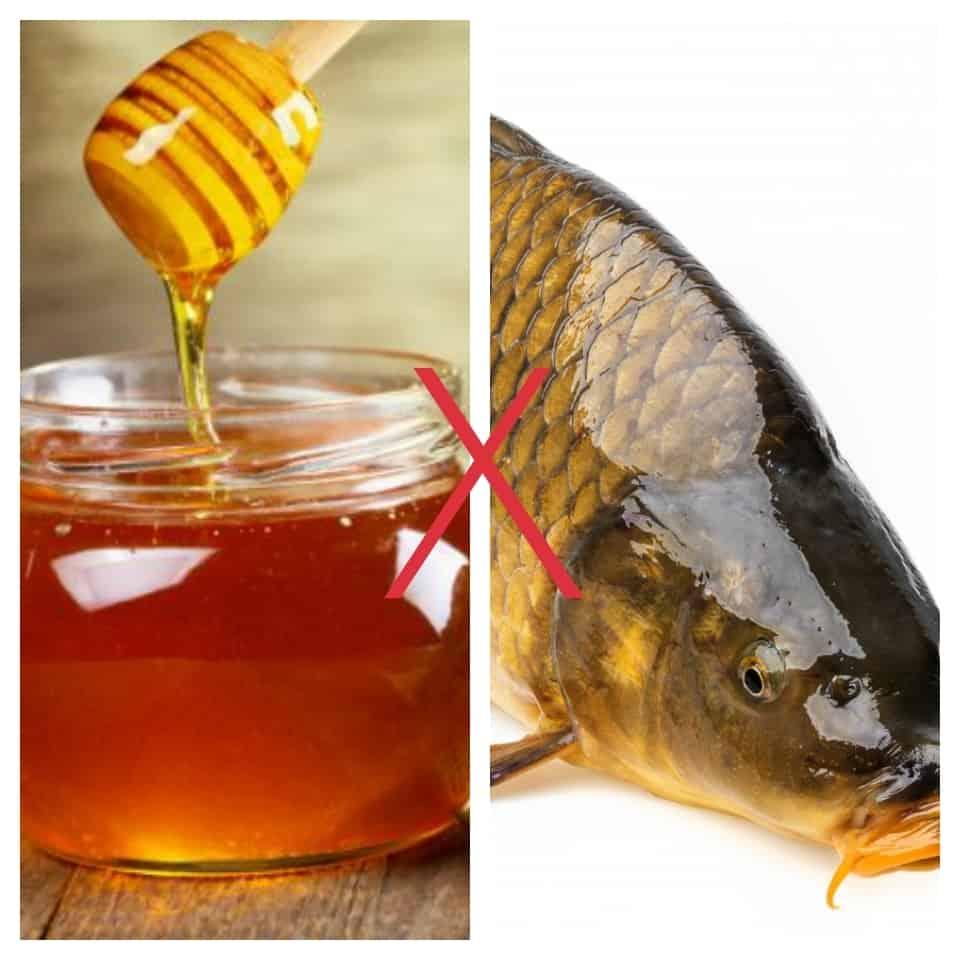 Cá chép với Mật ong