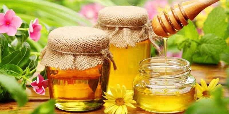 mật ong đà lạt